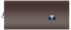 logo sklepu brylant.net